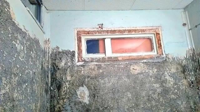 Как снять старую краску со стен при ремонте в ванной для качественной укладки плитки. Все способы - LALAMASTER.RU