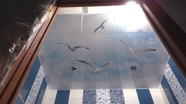 Ужасы отделки потолка в ванной панелями за 1800 р. Как сделать потолок своими руками без проблем - LALAMASTER.RU